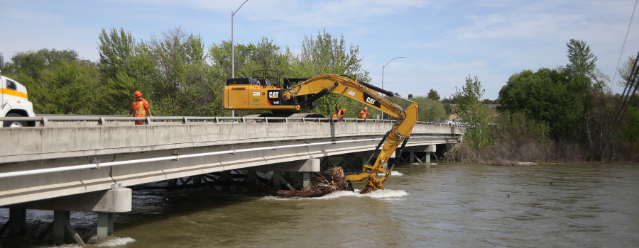 Bridge Snag Removal
