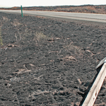 wildfire damaged sign