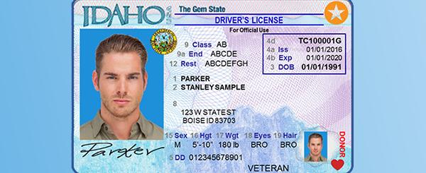 Star Card Sample Image