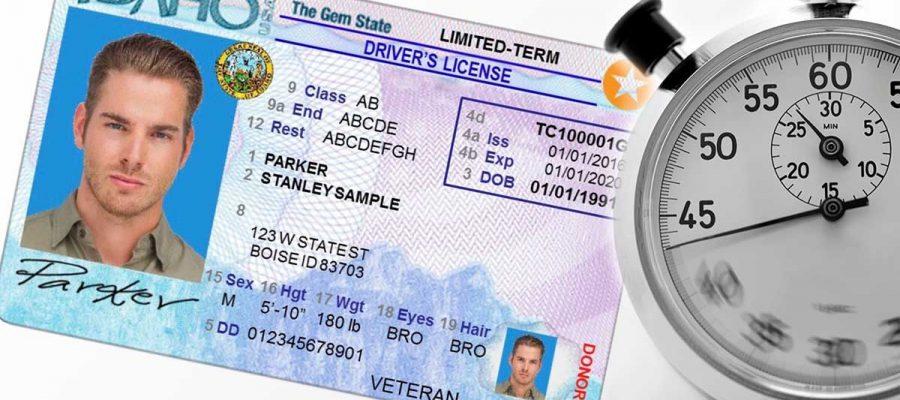 state of idaho drivers license status