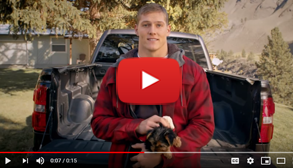 Buckle Up, Idaho: Rules to LVE By 15 second video