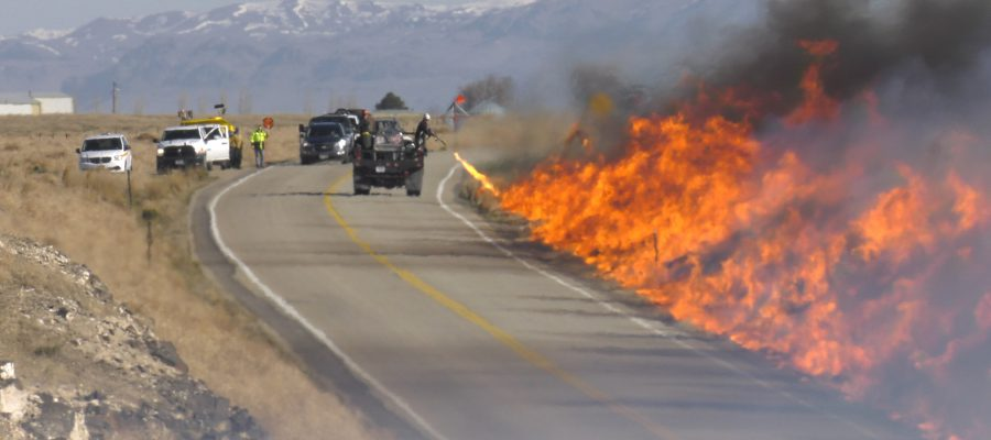 BLM fire crew conducts controlled burn along a highway