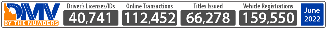 DMV monthly Transaction Numbers